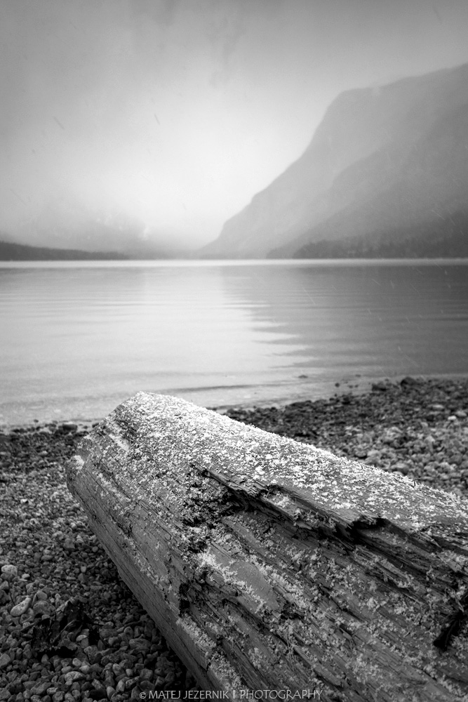 Forgotten log with first snowflakes at the shore of Lake Bohinj