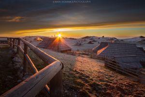 Warmth of the morning sun.jpg