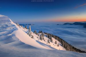 Winter alpenglow.jpg